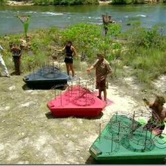 The Final Immunity Challenge in <i><a href=