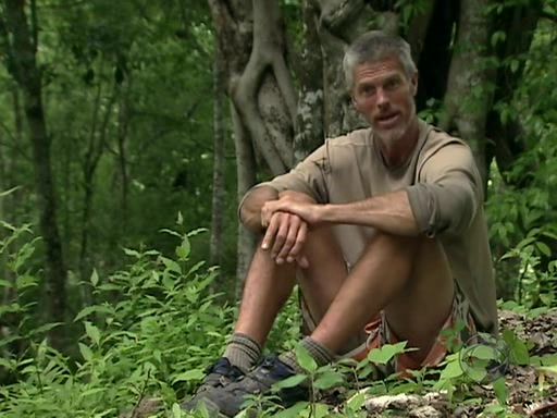 File:Survivor.s11e09.pdtv.xvid-ink 397.jpg