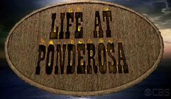 Survivor-LifeAtPonderosa