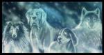 Spirit-dogs