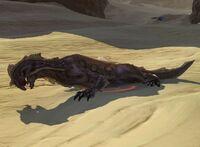 Duneskimmer Rill