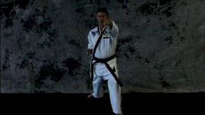 Taekwondo Martial Arts Basics Taekwondo Lung Punch