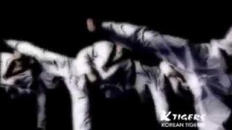 K-tigers taekwondo team promotion movie
