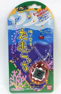 Ocean Japan package