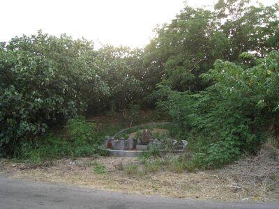 圖片8位於公司田溪旁的外城岸.jpg