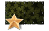 Star Paint