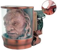 CO 5 Face of Boe