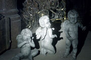 Infant Angels