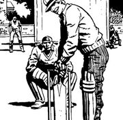 Cricket middle and leg