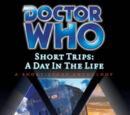 Short Trips: A Day in the Life