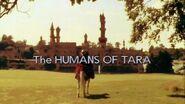 The Humans of Tara
