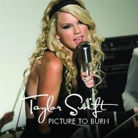 Taylor swift picture to burn.jpg