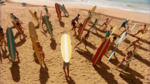 Surf Crazy (340)