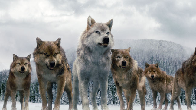 Lykona: Druidic Shapeshifter - Wolf Totem by ZenAquariaPony on ...