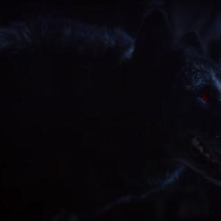 Talia's Wolf Form