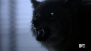 Teen Wolf Season 3 More Bad Than Good Werecoyote