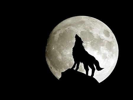 File:Wolfmoon1.jpg