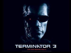 54 Terminator3 RiseofMachines ArnoldSchwarzenegger freemovies desktopwallpaper l