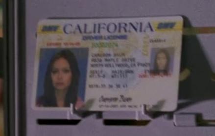 File:SCC 102 camerons fake driver license.jpg
