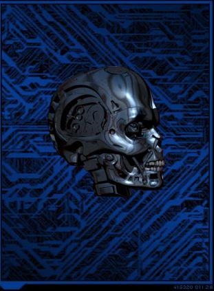 File:Tk skull view.jpg