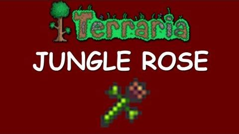 Jungle Rose