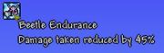 Beetleendurance