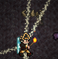 File:Demon Altar Bug 2.png