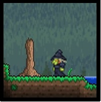File:Terraria witch.jpg