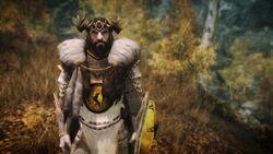 Baratheon Armor