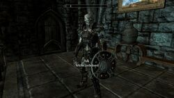CVR Draugr Castle Guards