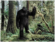 Bigfoot-2