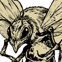 File:MOB crazed bee.png
