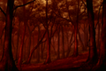 546px-Forest2