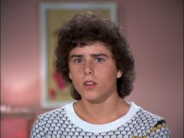 Chris-Knight-as-Peter-Brady-the-brady-bunch-22475040-500-375