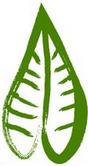 Broadleaf symbol
