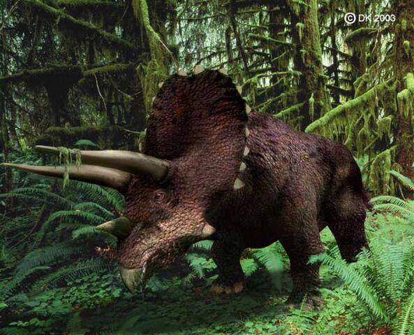File:Triceratops1.jpg