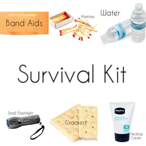 File:Survival Kit.jpg