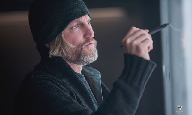 File:Haymitch Mockingjay.jpg