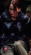 Katniss burn