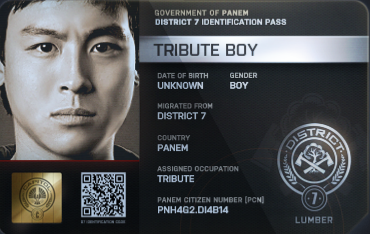 District 7 Tribute Boy ID Card 2