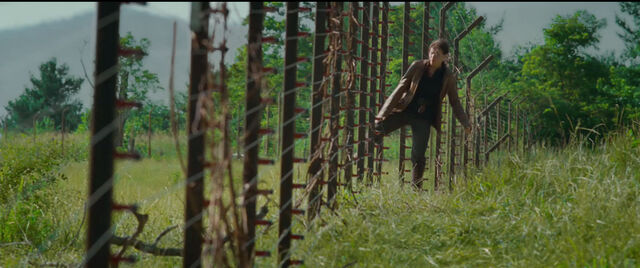 File:Hunger-games-electric-fence.jpg