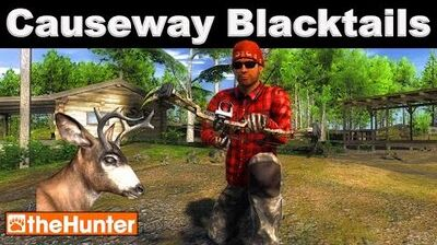 TheHunter Causeway Blacktail Hunting