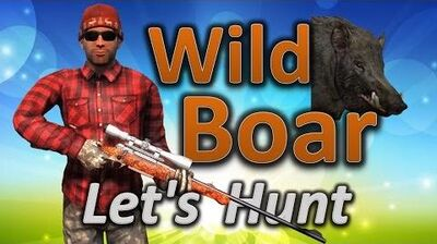 TheHunter Let's Hunt WILD BOAR