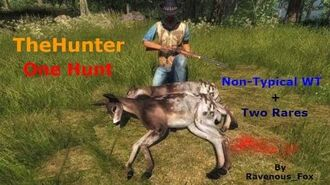 TheHunter - One Hunt Non-Typical WT + Two Rares