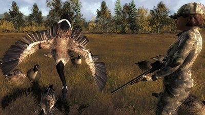 Trophy canada goose