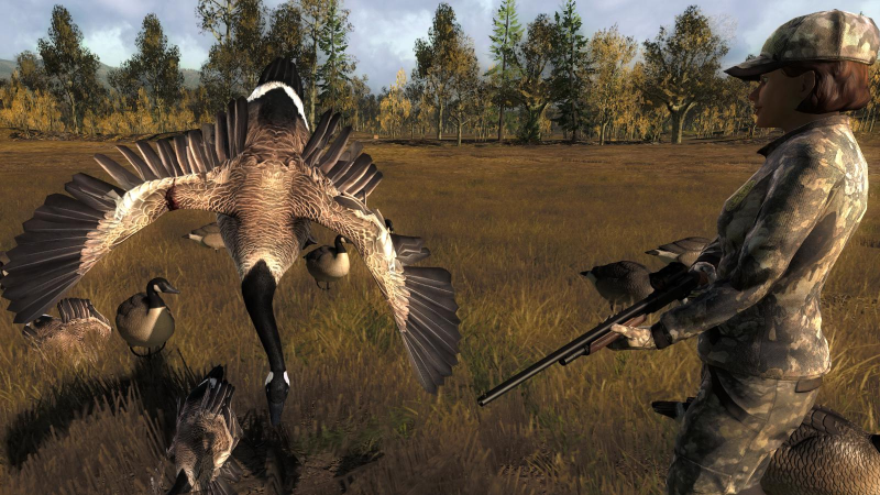 Canada Goose' official nintendo