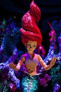 Ariel usa