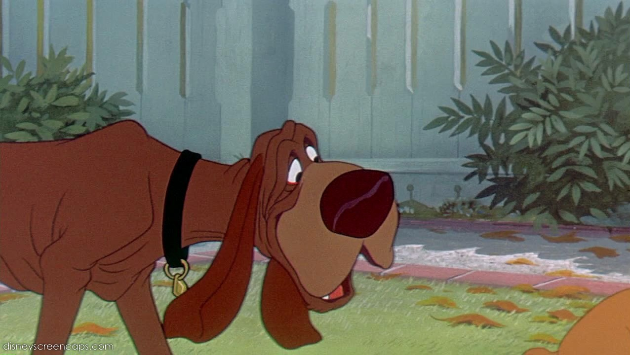 Name Of The Bloodhound Dog In Lady And The Tramp
