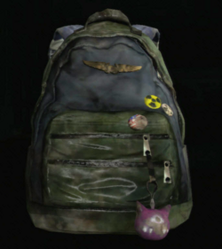 Ellie's Backpack