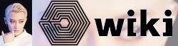 Wiki-wordmark-tao